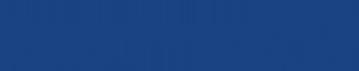 Löwen-Garage Wüst Logo
